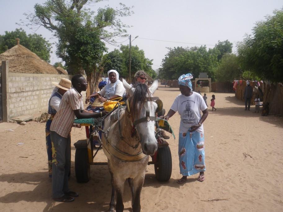 Voyage au Sénégal